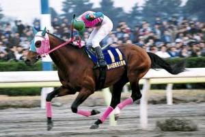 日刊競馬で振り返るGI - 1998年東京大賞典(アブクマポーロ)