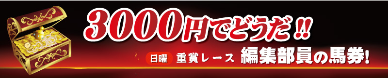 3000円でどうだ!!